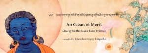 ocean of merit full cover snap